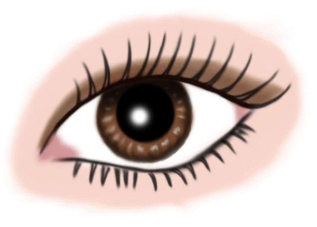 auge braun - makeup hellbraun