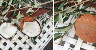 Kokosoel Allrounder 375x195 - Das Kokosnussöl entpuppt sich als wahrer Allrounder