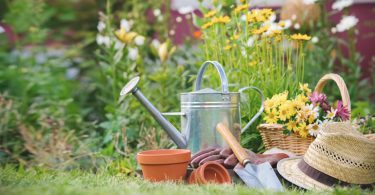 garten im frühling 375x195 - Gartenkalender – Frühjahrsarbeiten