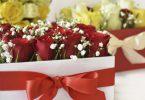 Header 1 1 145x100 - DIY Flowerbox – Die Trend-Frühlingsdeko selbst basteln mit Sintre