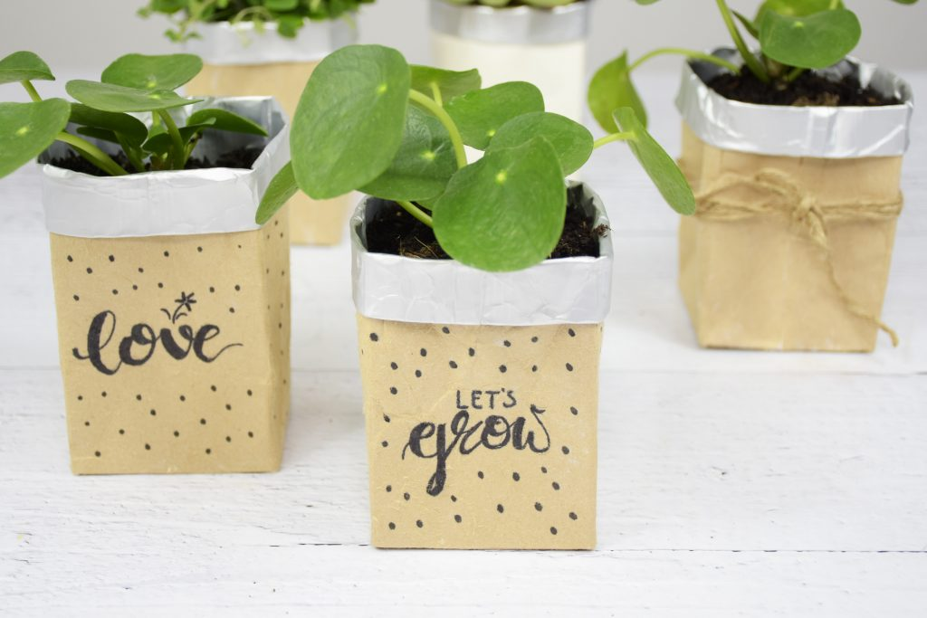 Beitragsbild fertiger Blumentopf 1024x683 - Tolle Upcycling-Ideen: Basteln mit Tetrapack