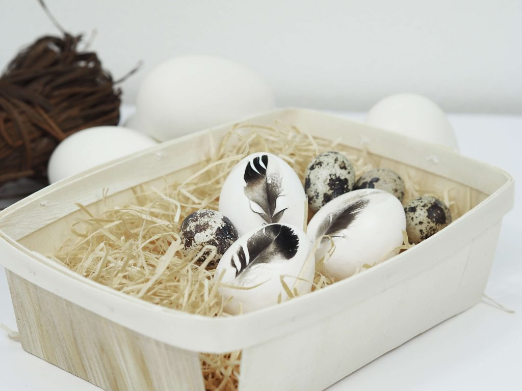 Ostereier mit Federn bemalen liegen in einer Schale
